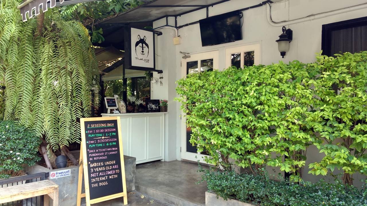 TrueLove @ Neverland Husky Cafe Bangkok
